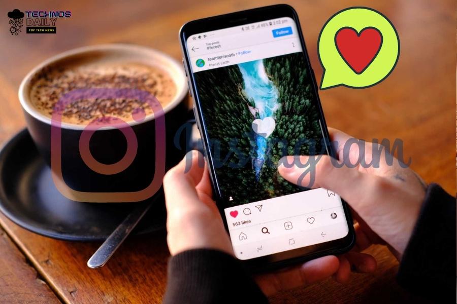 gain instagram followers